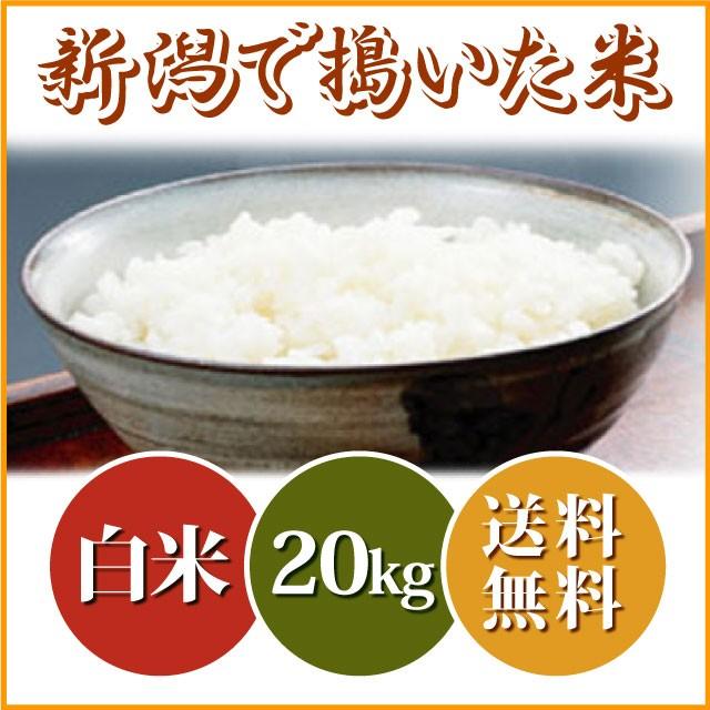 新潟で搗いた米 20kg(白米)【送料無料 ※沖縄を...