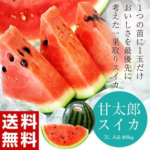 スイカ 千葉県富里産「甘太郎(かんたろう)スイ...