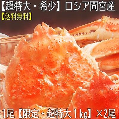 【送料無料】ロシア間宮産【超特大】ズワイガニ 姿 1kg×2尾。本当に大きく希少なサイズ、活蟹をボイル!北海道直送【z1】【z6】