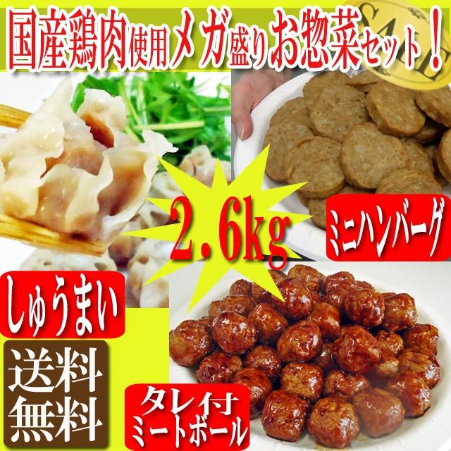 300円オフクーポン使える! 肉 送料無料!国産鶏肉...