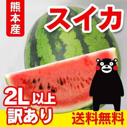 送料無料  熊本産  訳あり 大玉 スイカ  2玉 ≪2...