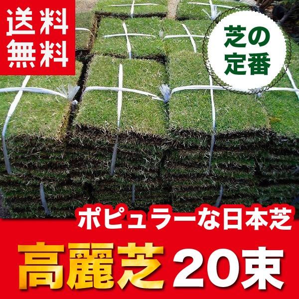 【送料無料】 高麗芝 (コウライシバ) 20束 芝生 ...