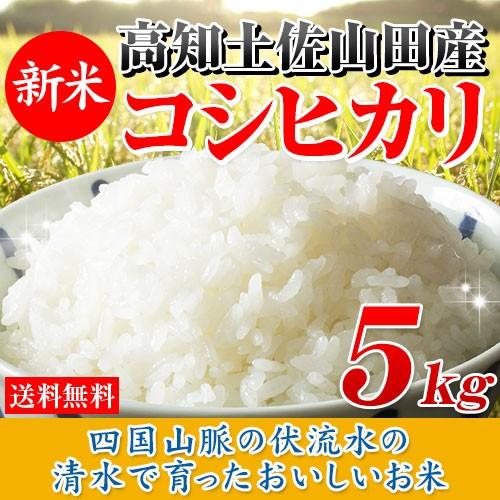 30年産 高知県産コシヒカリ5kg【新米入荷】【高級...