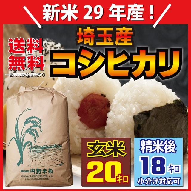 埼玉産コシヒカリ玄米20kg 29年産 精米無料・小...