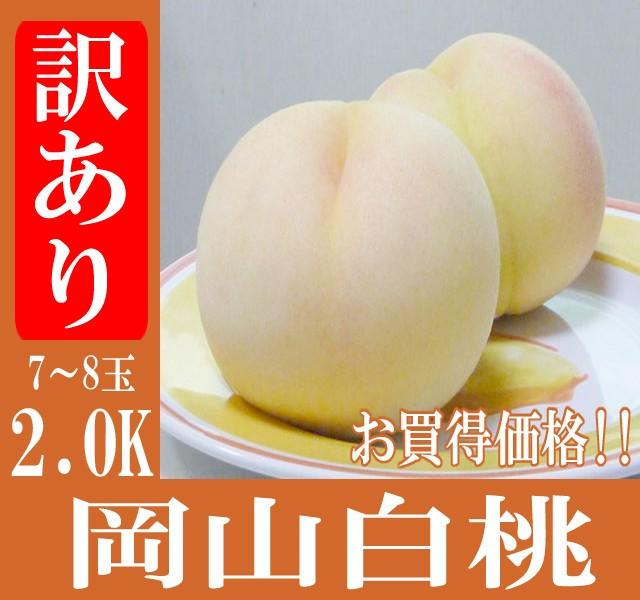 岡山産/訳あり 白桃 2.0K/約7〜8玉/白桃/桃/岡...
