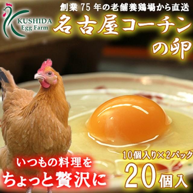 高級卵☆愛知が誇るブランド卵☆名古屋コーチンの卵【20個入(破卵保障2個含む)】