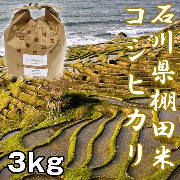 石川棚田米コシヒカリ3kg (お米,,こしひかり,新米...