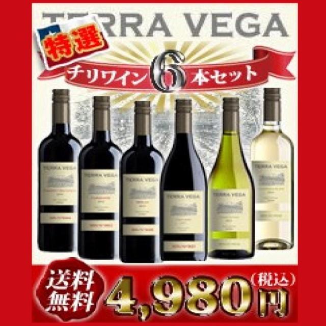 チリワイン 6本セット テラ・ベガ TERRA VEGA【送...