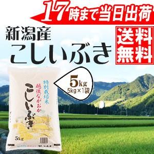新潟県産こしいぶき5k 30年産 特別栽培米 ≪高田...