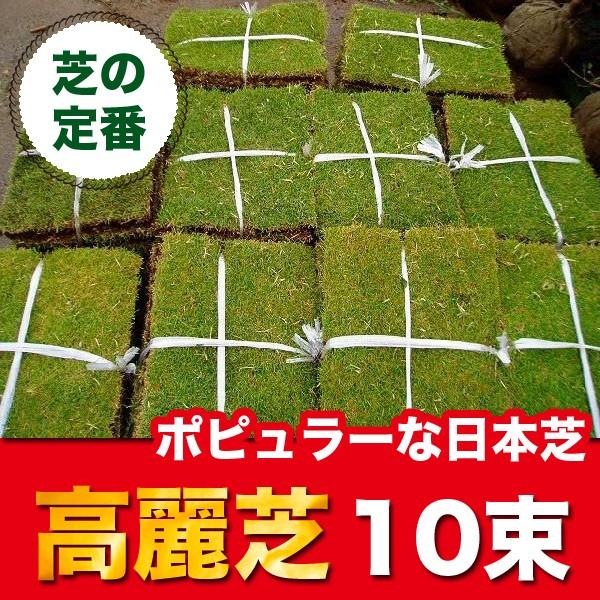 高麗芝 (コウライシバ) 10束 芝生 グランドカバー...