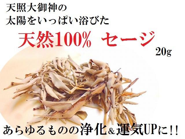 天然100%セージ★枝付・リーフ★たっぷり20g★...