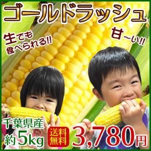 とうもろこし  ゴールドラッシュ 千葉県産 約5kg ...