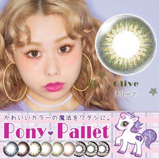 [メール便送料無料]Pony&Pallet/1day/10枚入り/シ...