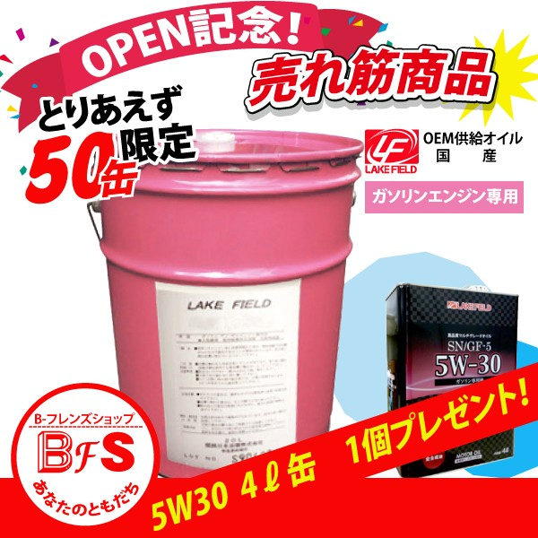 【オープン記念セール 景品付き】LAKE FIELD エ...
