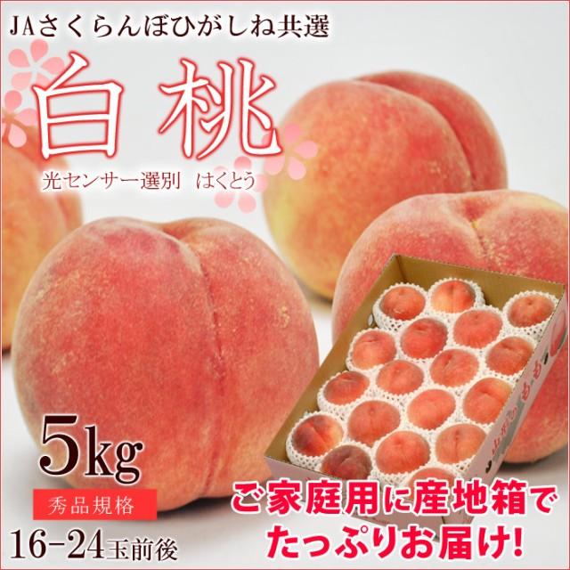 【送料無料】白桃 約5kg(16〜24玉前後) ご家庭用...