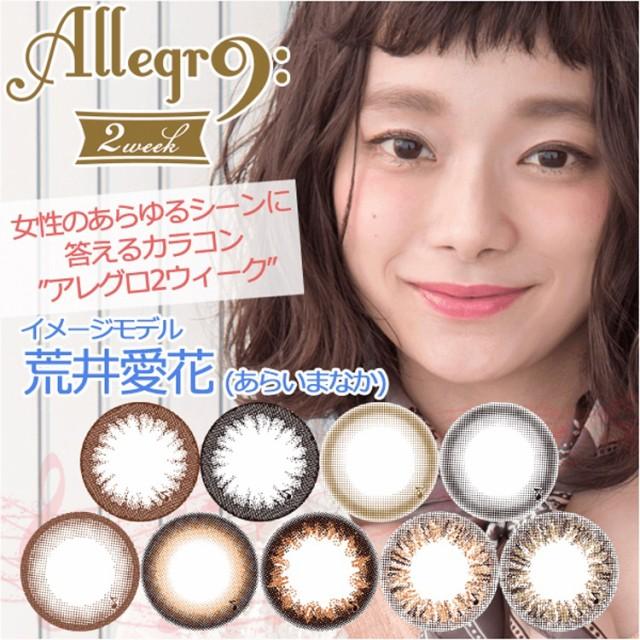 [メール便送料無料]Allegro2week/1箱4枚入り