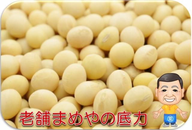 まめやの底力 北海道産大豆 1kg    【全国宅配...