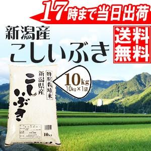 新潟県産こしいぶき 10kg 特別栽培米 30年産 送料...