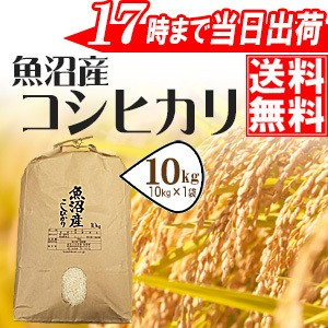魚沼産コシヒカリ10kg 30年産 送料無料(一部地域...