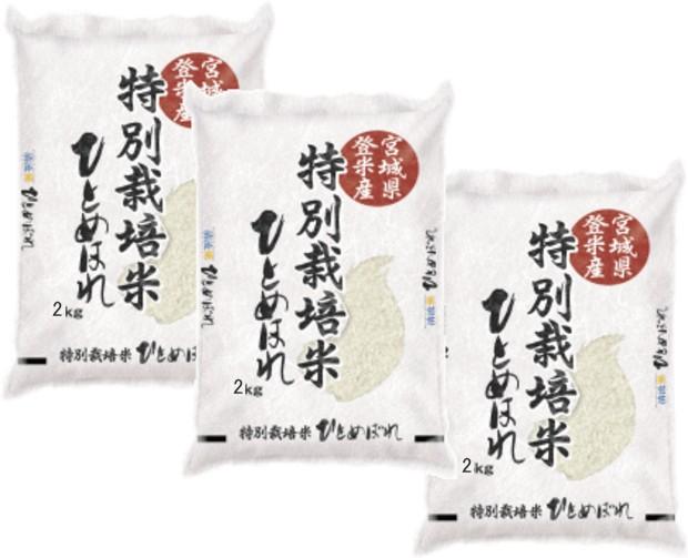 タイムセール 29年産 【送料無料】 宮城県登米市...