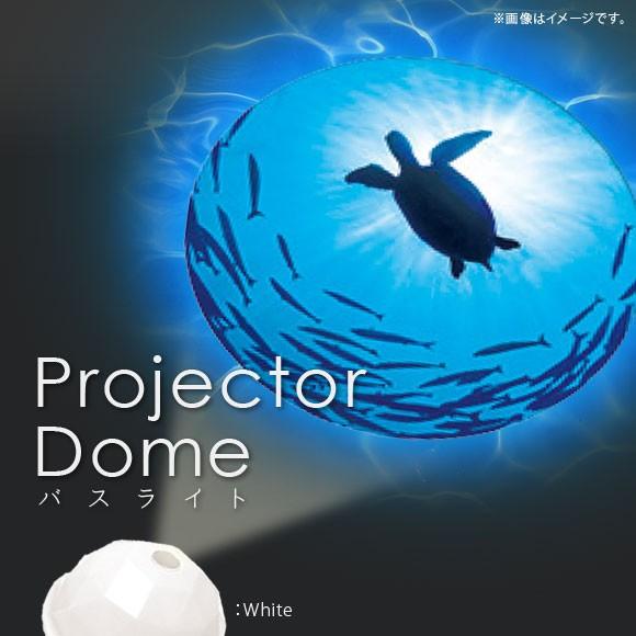 家庭用 プロジェクター バスグッズ ウミガメ 【54...