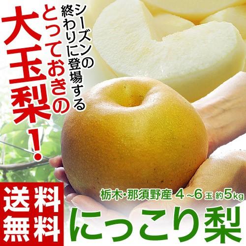 梨 ナシ 和梨 送料無料 栃木県産 にっこり梨 約5...