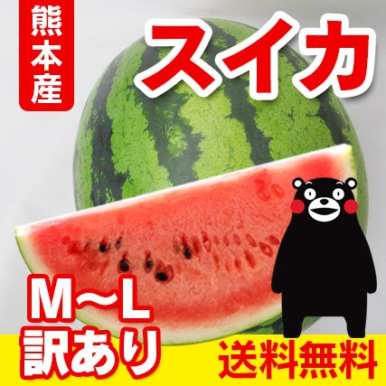 送料無料  熊本産  訳あり スイカ  1玉 ≪ M〜L...