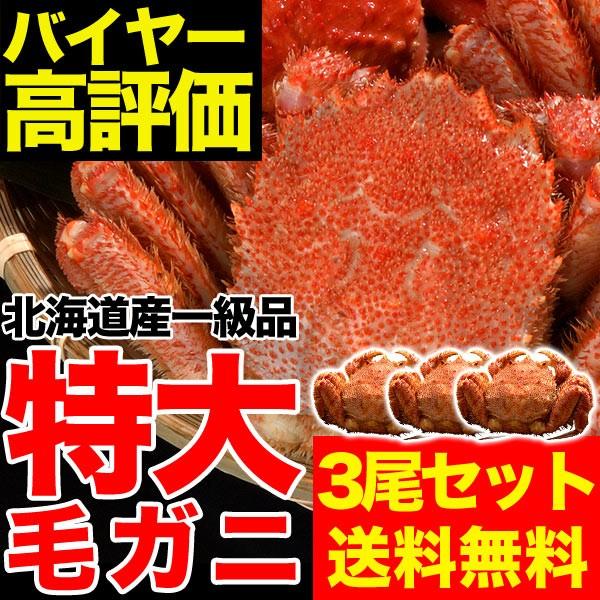 豪華特大毛ガニ約570g3尾セット(合計約1.7kg)【送...