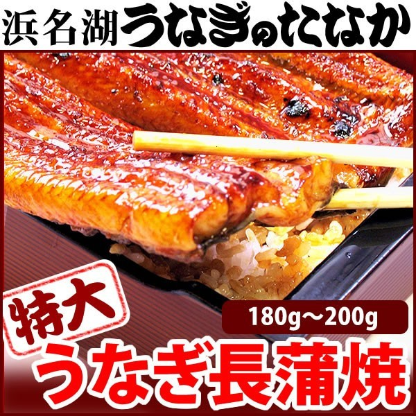 お中元 ギフト 国産 うなぎ 蒲焼き 鰻 送料無料 ...