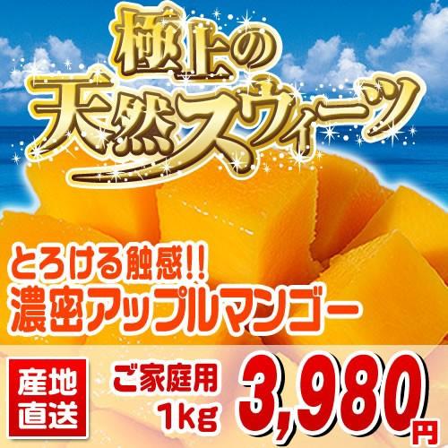 マンゴー 沖縄産1kg 訳ありじゃないのにこの価格...