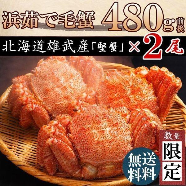 毛ガニ 毛蟹 カニ 蟹 姿  特大 北海道産 ボイル 毛がに 毛蟹 480g×2尾 かに けがに ギフト プレゼント 送料無料 お買い得 かにみそ
