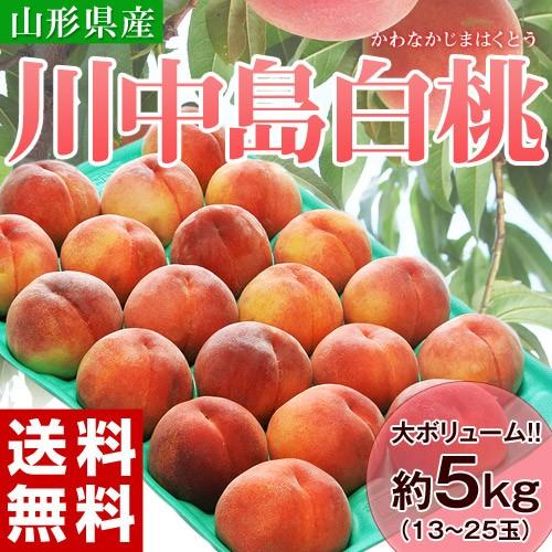 桃 もも モモ 送料無料 山形県産 川中島白桃 約5...