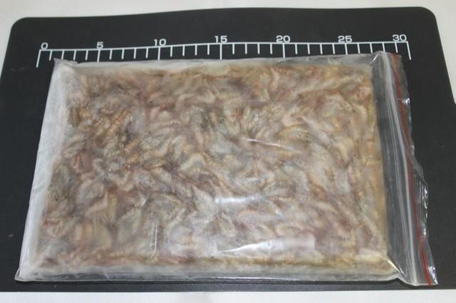 鮮度抜群 最高品質 中国産ブロック冷凍カワエビ...
