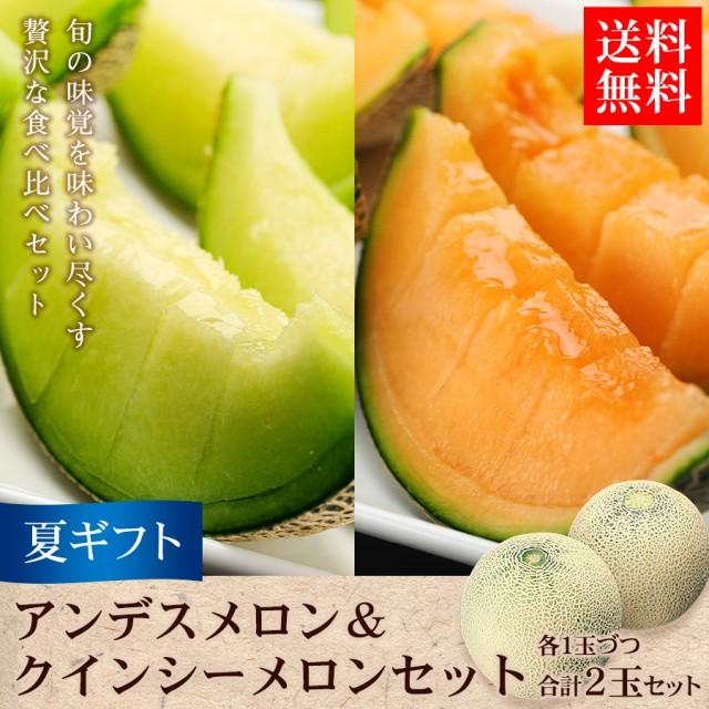 ギフト 送料無料 フルーツ 果物 アンデス&クイ...
