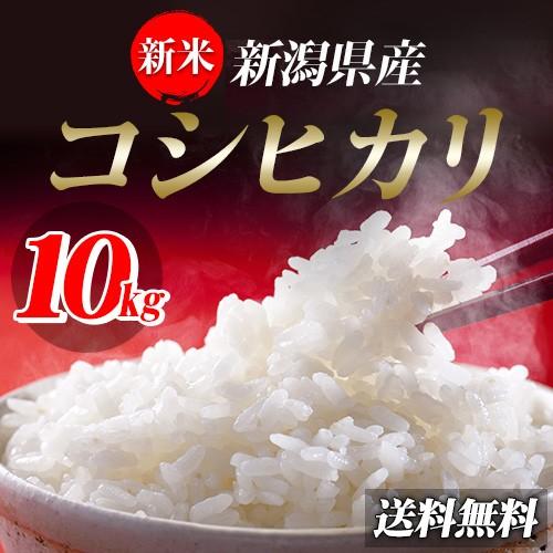 米 お米 29年産新潟県産コシヒカリ10kg【5k...
