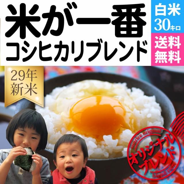 お米30kg 「米が一番」コシヒカリブレンド 送料無...