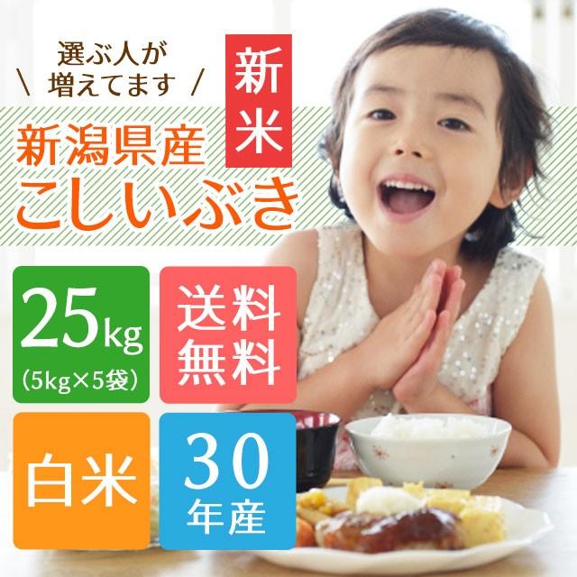 【30年産 新米】新潟県産こしいぶき 25kg(5キロ...