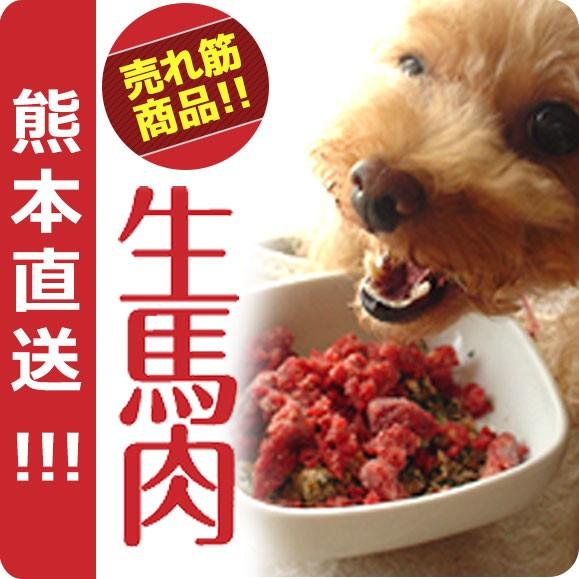 犬用 馬肉 犬 生肉 熊本直送 新鮮 生馬肉 300g×3...