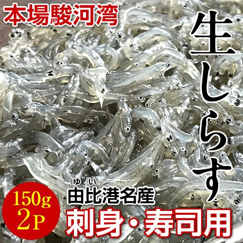 生しらす 駿河湾産 生シラス(いわし稚魚)150g×...