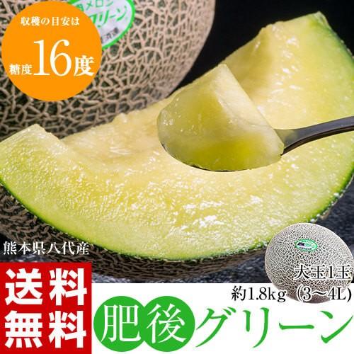 メロン 熊本県八代産 超特大 「肥後グリーン」 1...