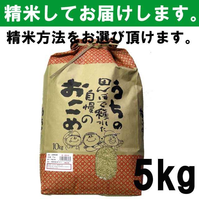 【平成30年度産】 兵庫県産ミルキークイーン 一...