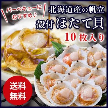 【送料無料】殻付ほたて貝 10枚入り 調理しやす...