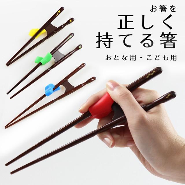 矯正箸 若狭塗 きちんと箸・ちゃんと箸 (こど...