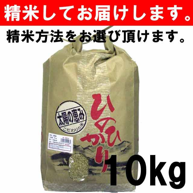 【平成30年度産】 兵庫県産ひのひかり 一等玄米1...