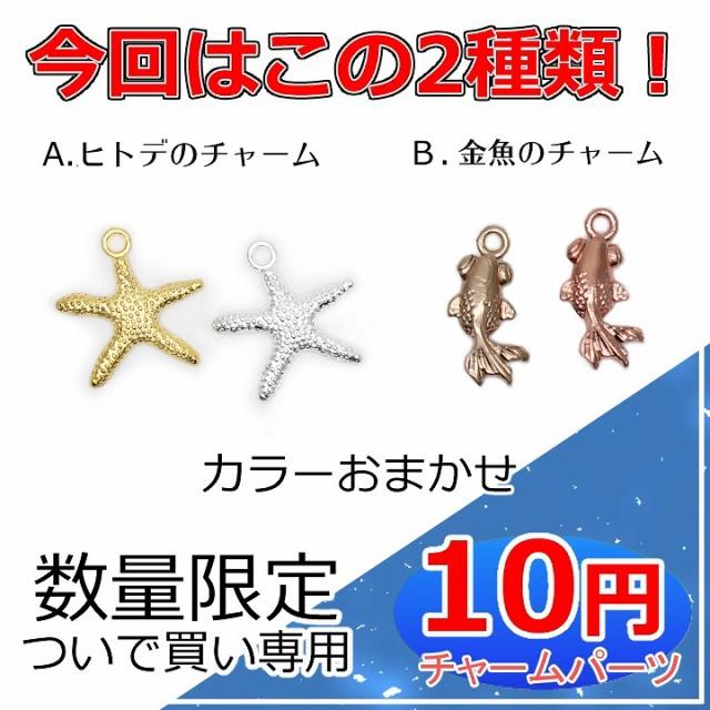 ついで買い専用 数量限定10円チャーム★チャーム ...
