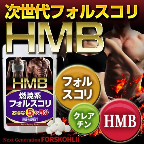 燃焼系で目指せ美Body!【HMB フォルスコリ 約5ヶ...