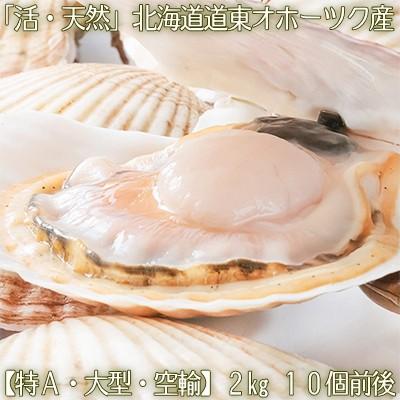 【航空便 送料無料 北海道産】活ホタテ 殻付き 2k...
