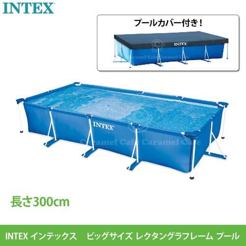 送料無料【INTEX インテックス】 品番:58981  フ...