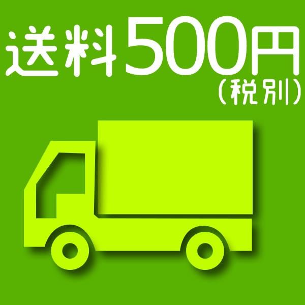 送料 500円(税別)