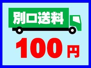 別口送料100円